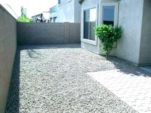 Backyard that is just gravel and one shrub
